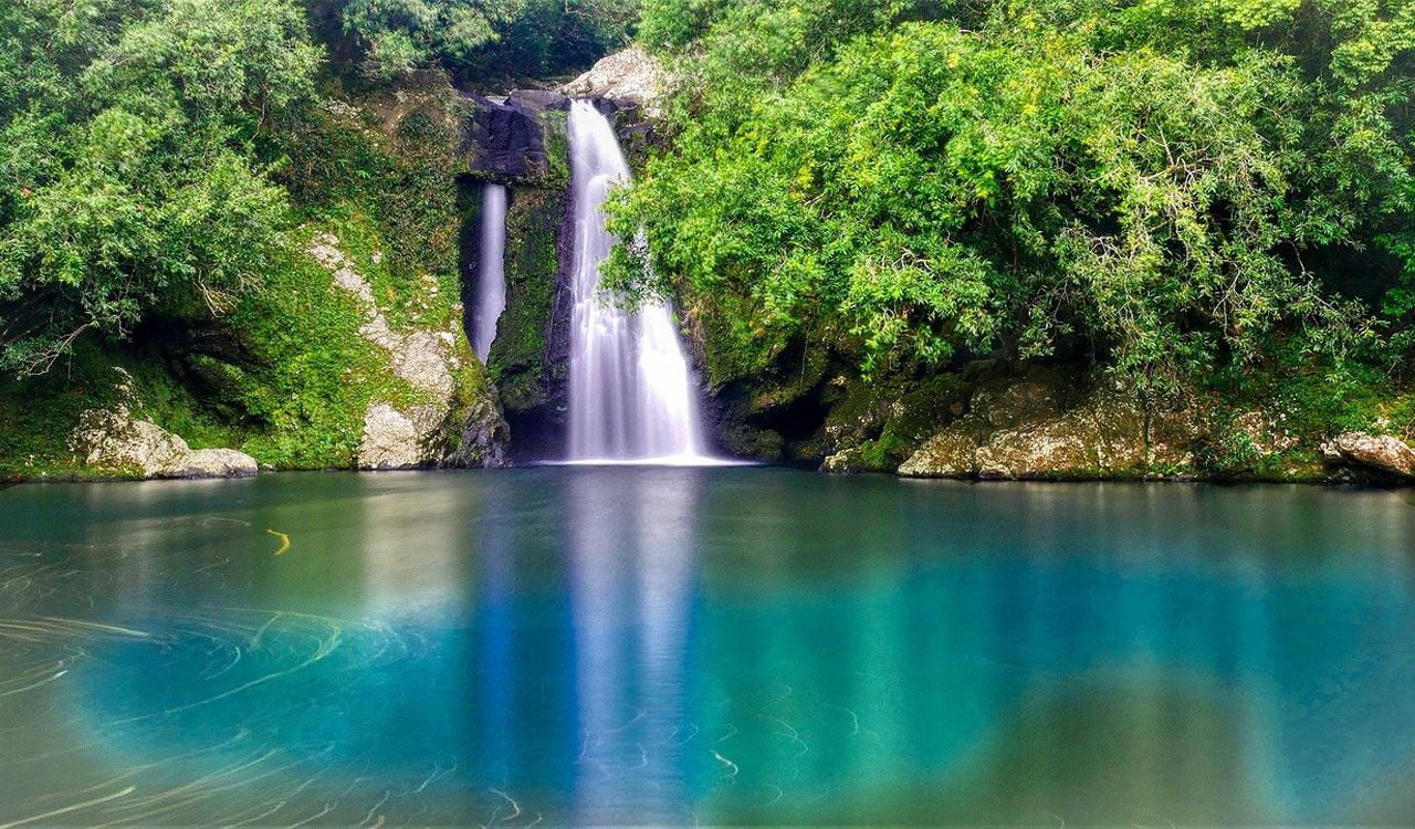 Visiter Saint-Joseph : 15 choses à faire à Saint-Joseph (La Réunion) et ses alentours